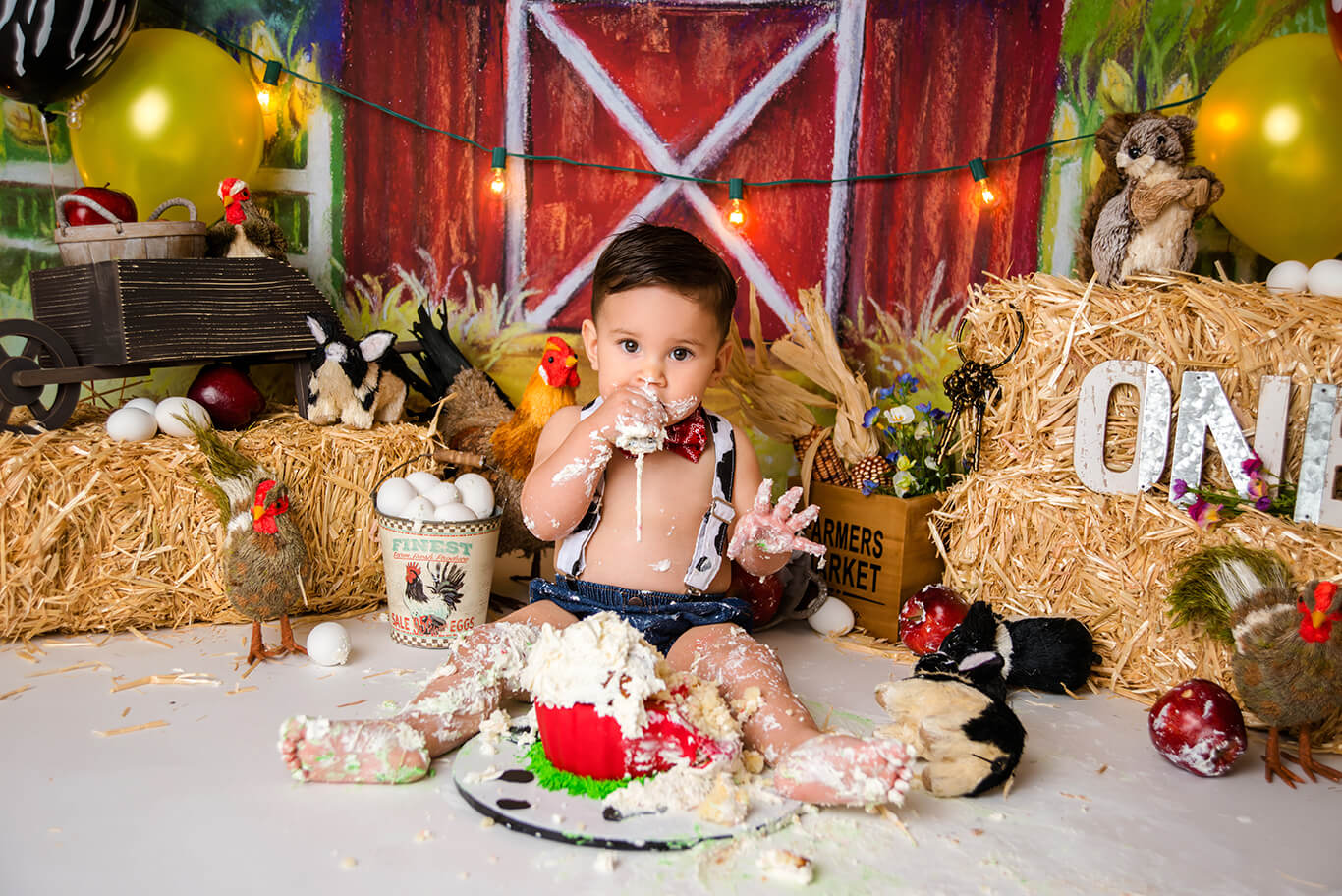 Farm cake smash first birthday portrait
