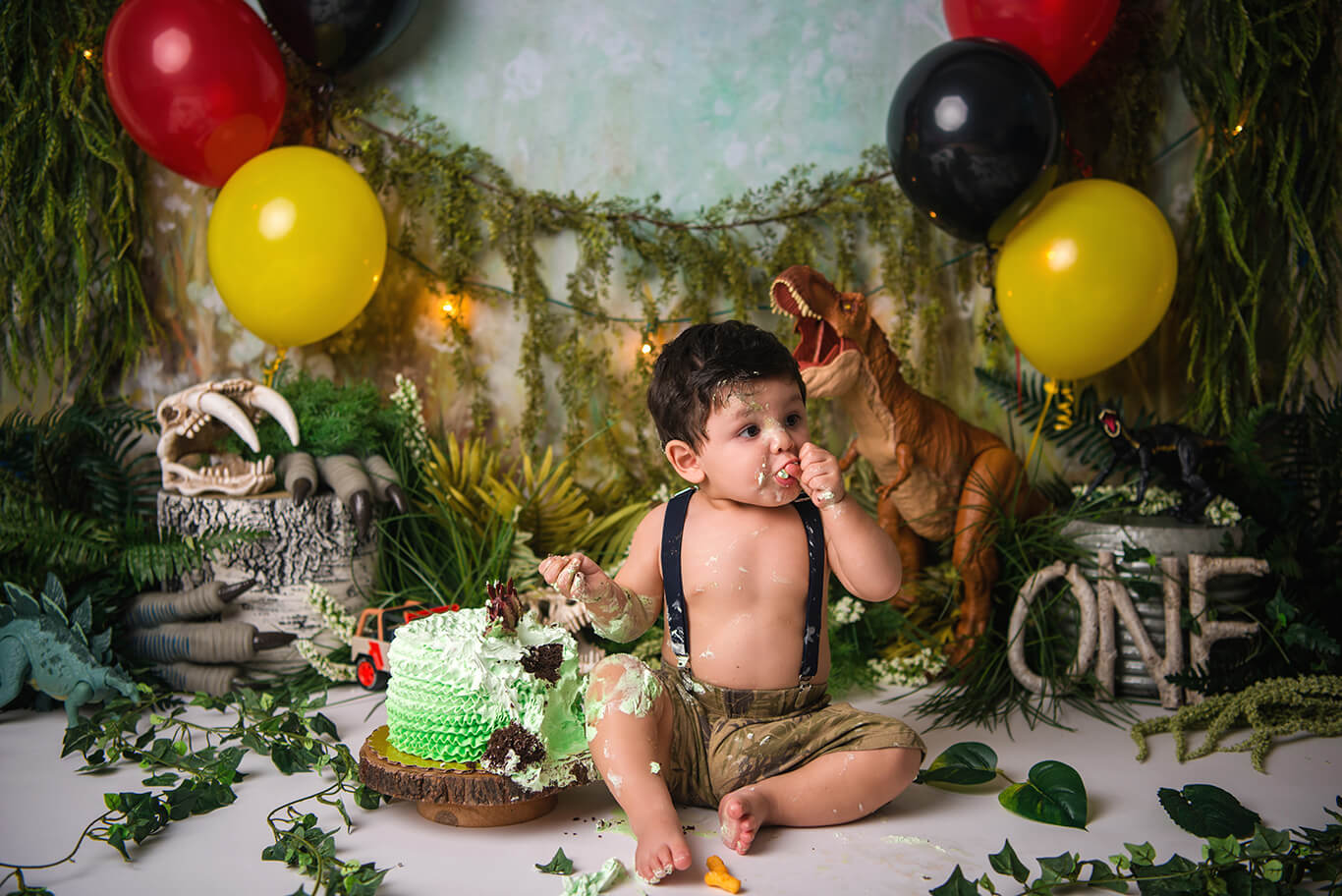 Jurastic world cake smash baby photographer