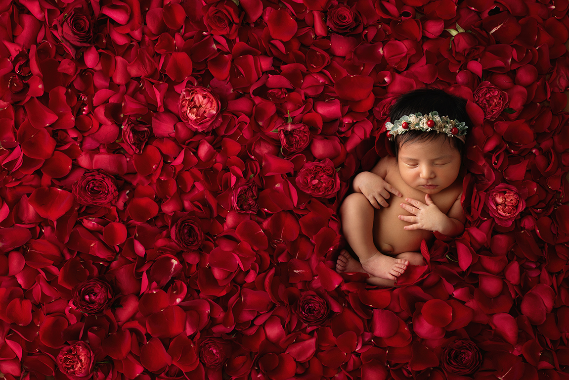 Dallas newborn photographer shoots unique baby flower photoshoot