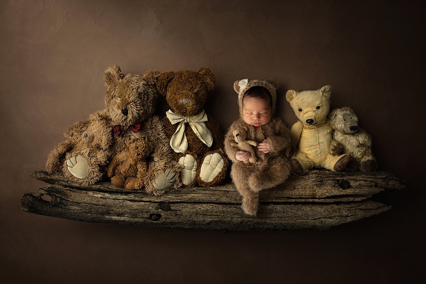 Newborn teddy bears studio photoshoot