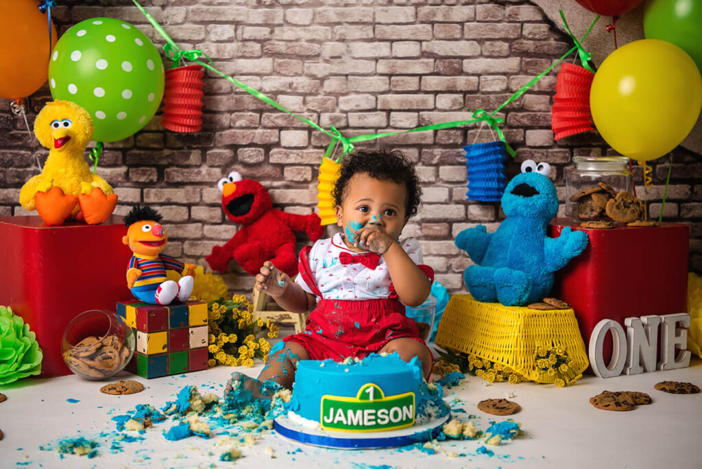Sesame street cake smash photoshoot child photographer Dallas
