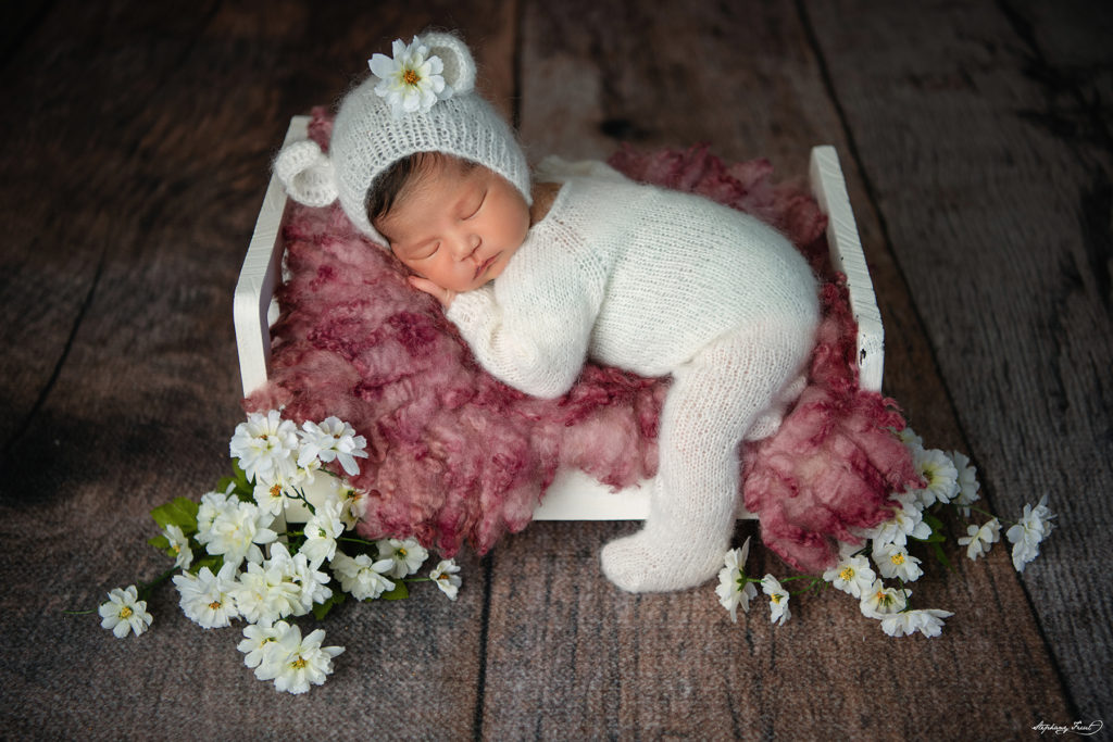 newborn photography girl baby photography Dallas