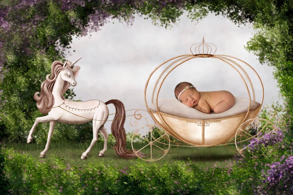Cinderella baby photography