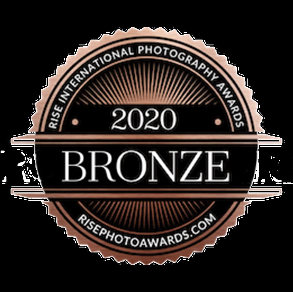 5 bronze award professional photographers in DFW Stephany Ficut